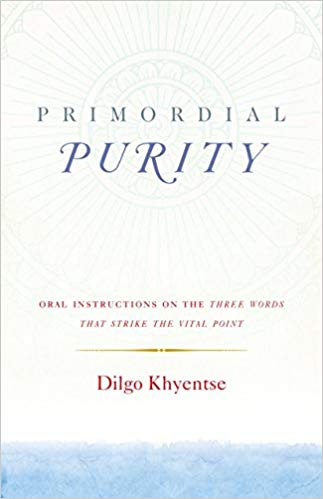 Dilgo Purity cover art
