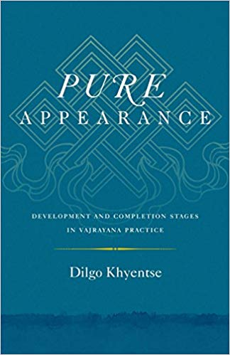 Dilgo Pure Appearance cover art