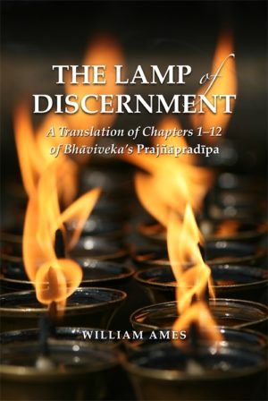Ames Lamp of Discernment cover art