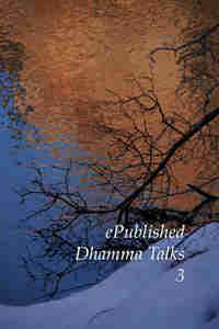 Than Dhamma Talks III cover art
