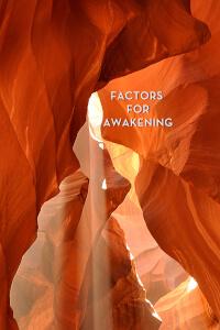 Than Factors cover art