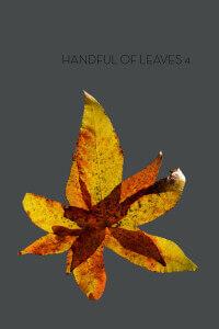 Than Handful IV cover art
