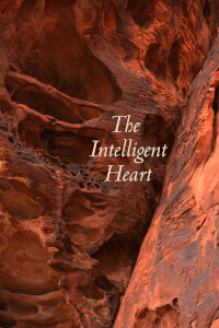 Than Intelligent Heart cover art