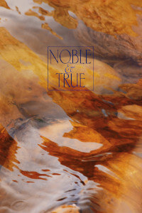 Than Noble True cover art