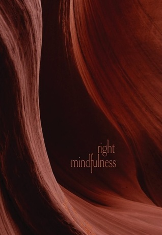 Than Right Mindfulness cover art