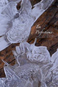 Than Ten Perfections cover art