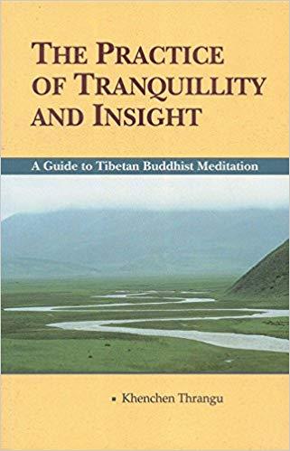 Thrangu Practice cover art