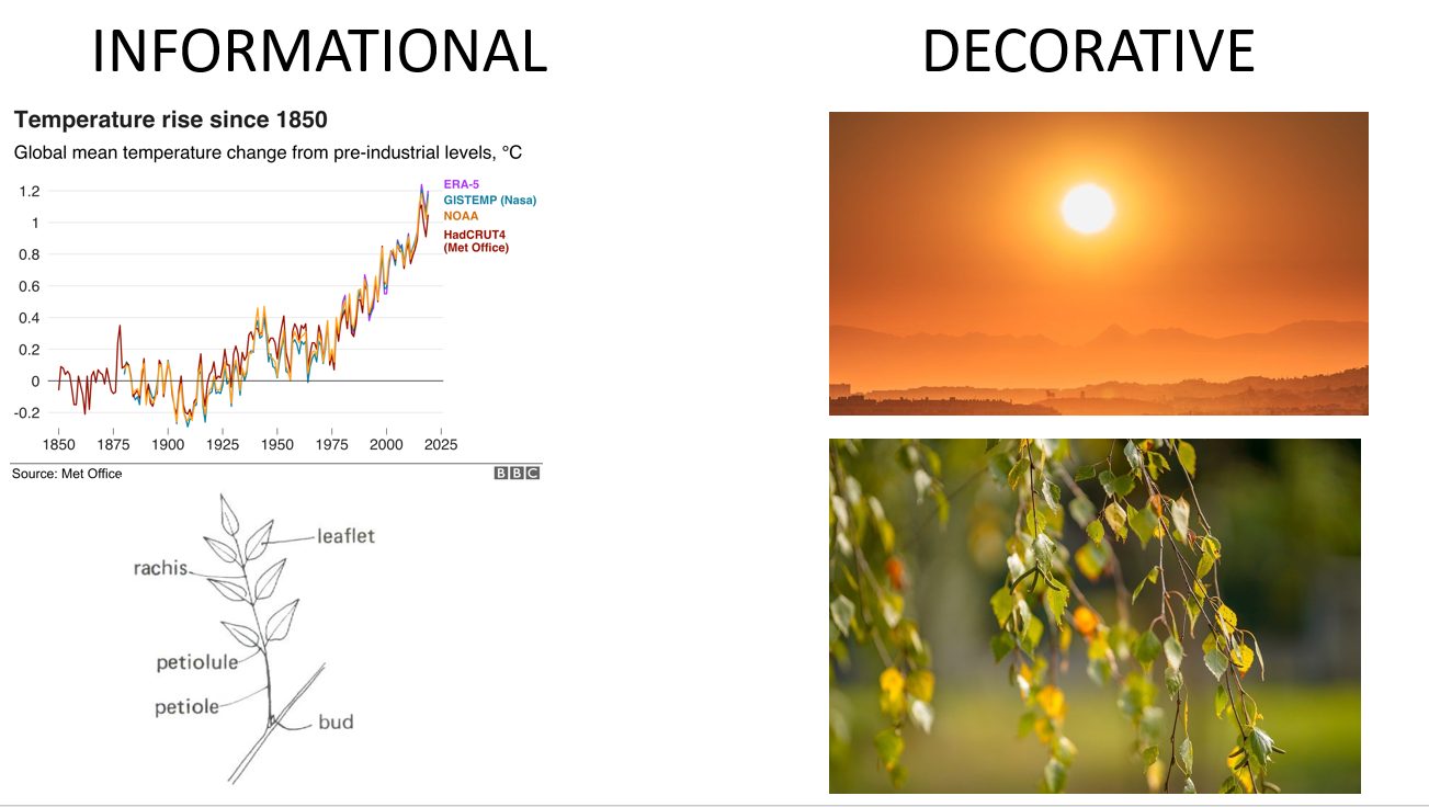 Illustration of informational images (climate change graph and parts of a blackberry leaf) and decorative images (sun over mountains and tree branch)