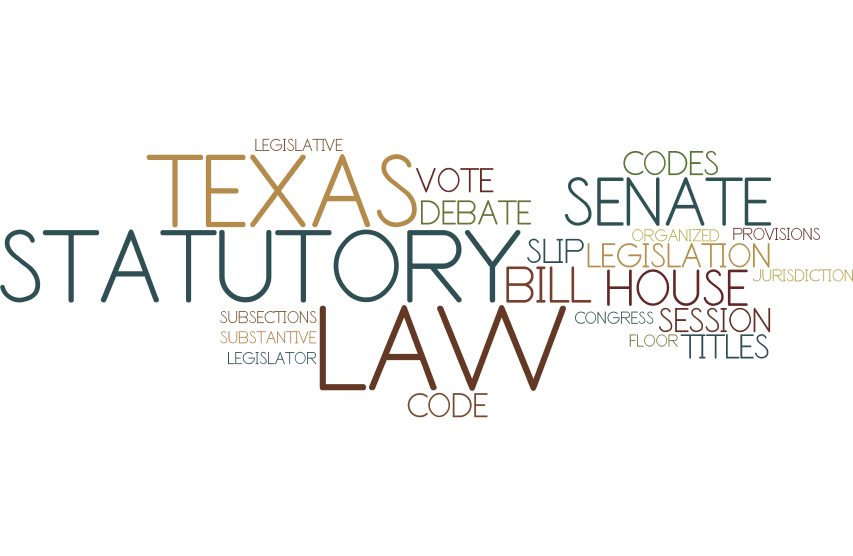 Texas Statutory Law Terms