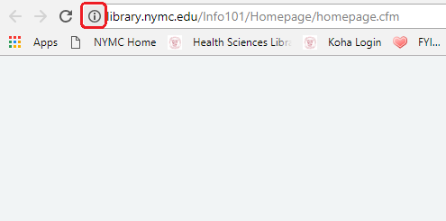 The 'i' icon in the address bar.