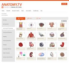 Screenshot of Anatomy TV/Primal Pictures Homepage