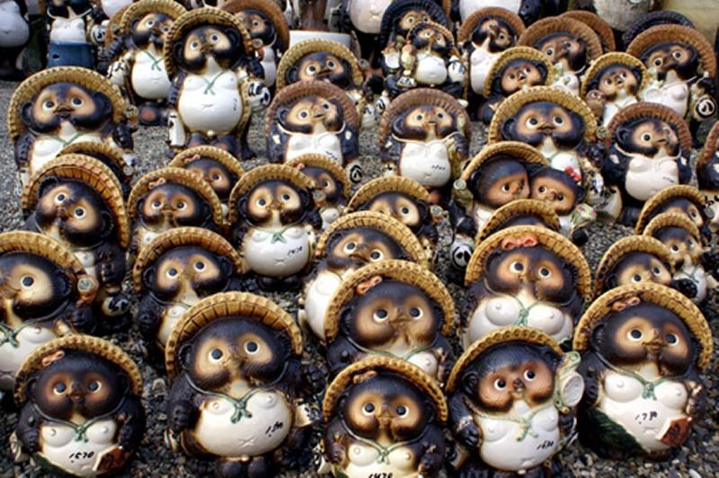 raccoon dogs potteries in Shiga