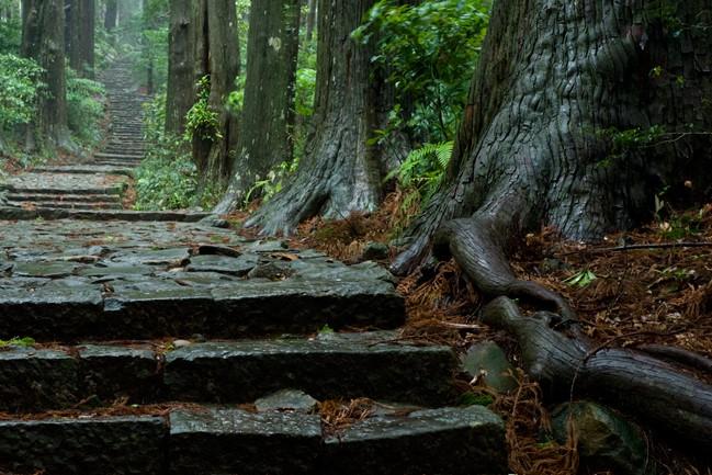 Ancient path in Wakayama, Japan