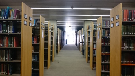 Picture of the stacks in the Leonard Lief Library