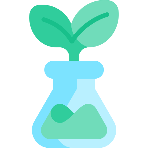 a plant sprouting from a glass flask