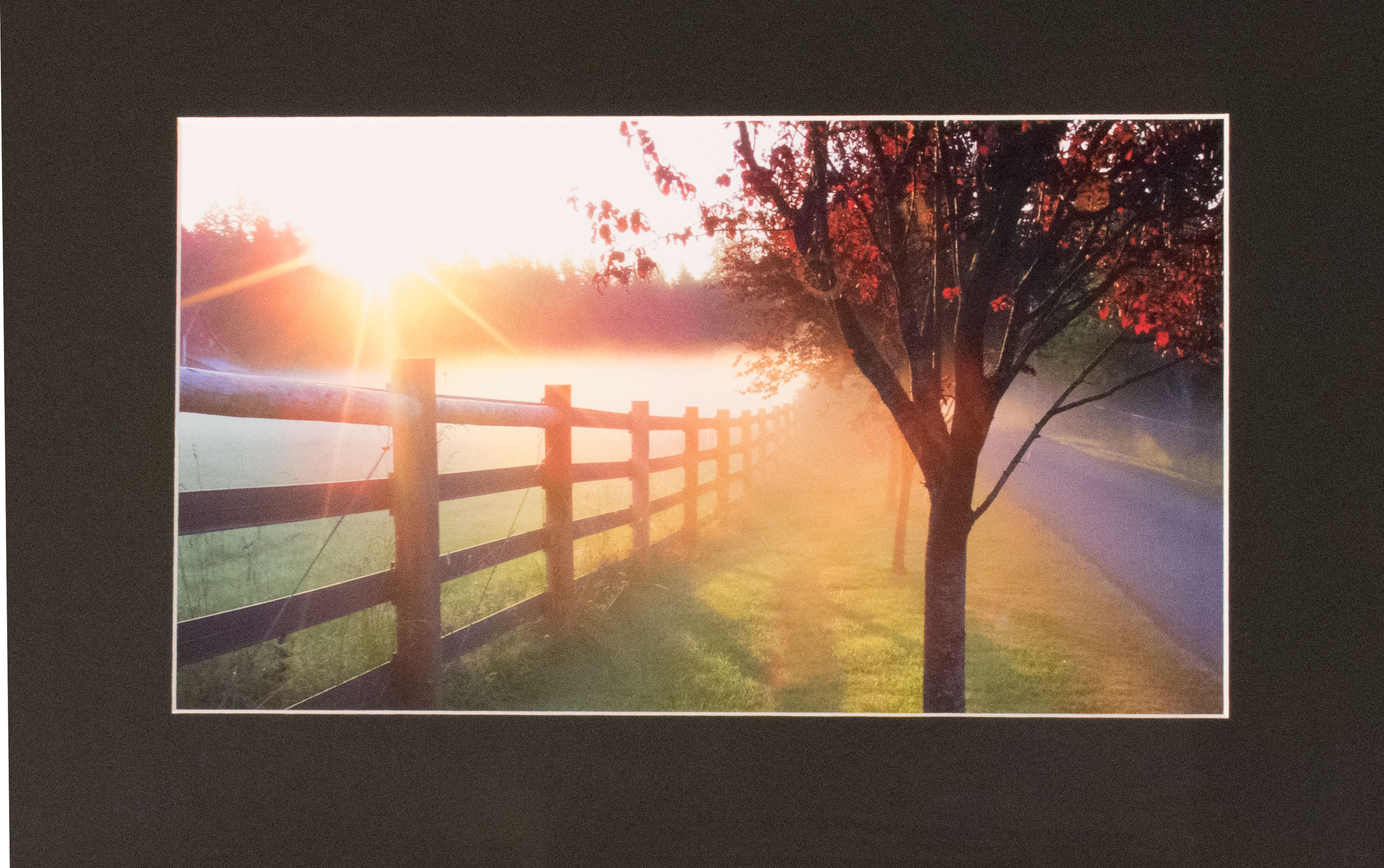 photo of orange sunrise across a fence and tree