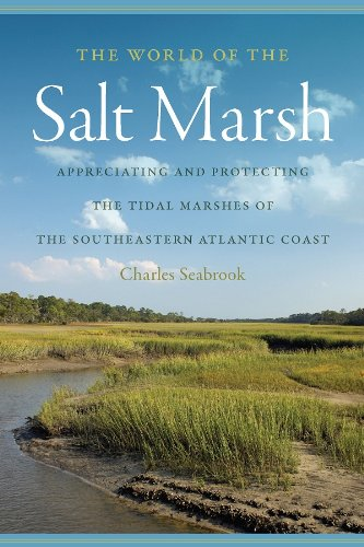 World of the Salt Marsh
