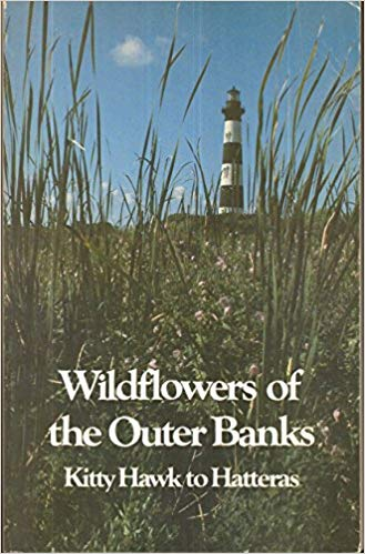 Wildflowers of the Outer Banks