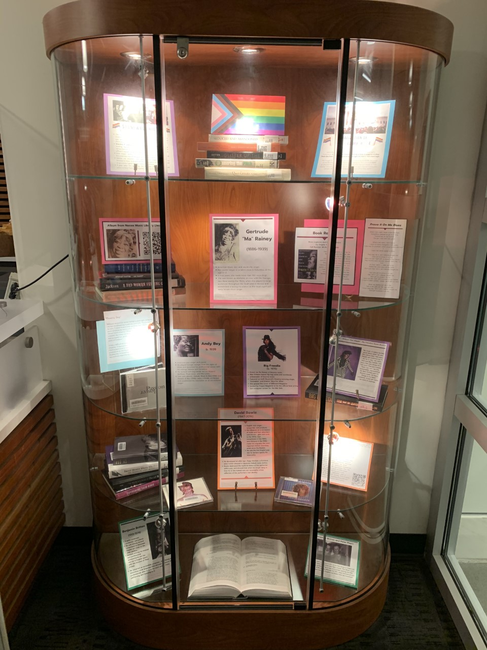DeVine Display Case featuring LGBTQIA+ materials