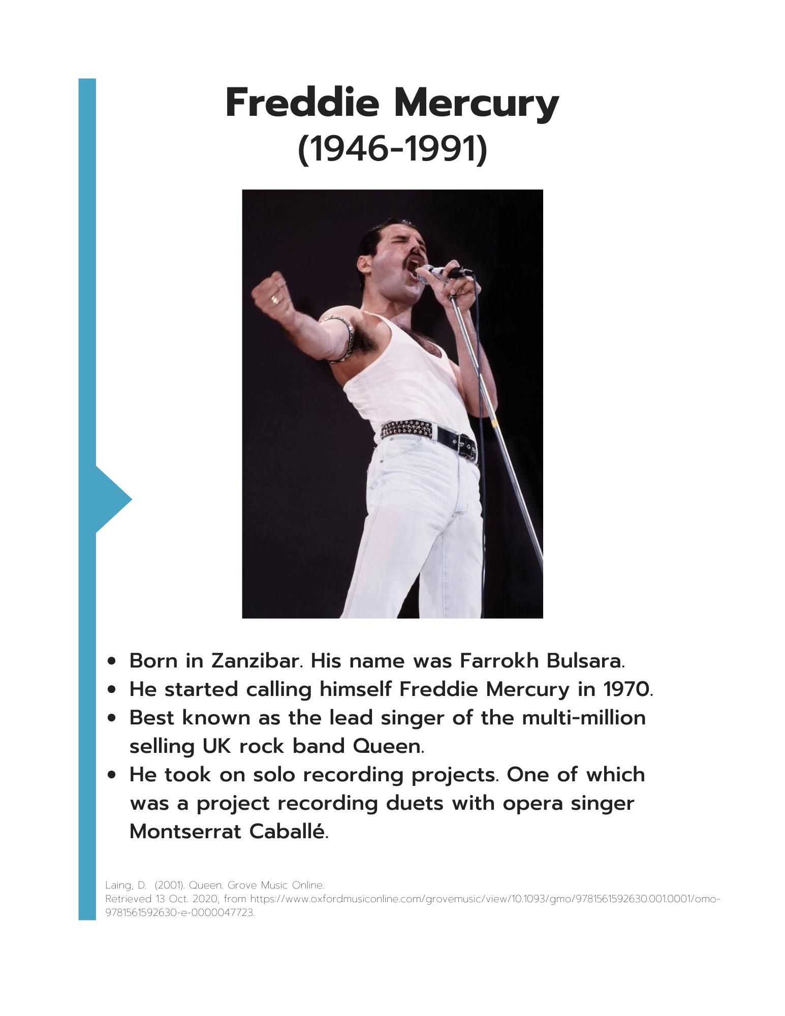 Freddie Mercury information sheet art