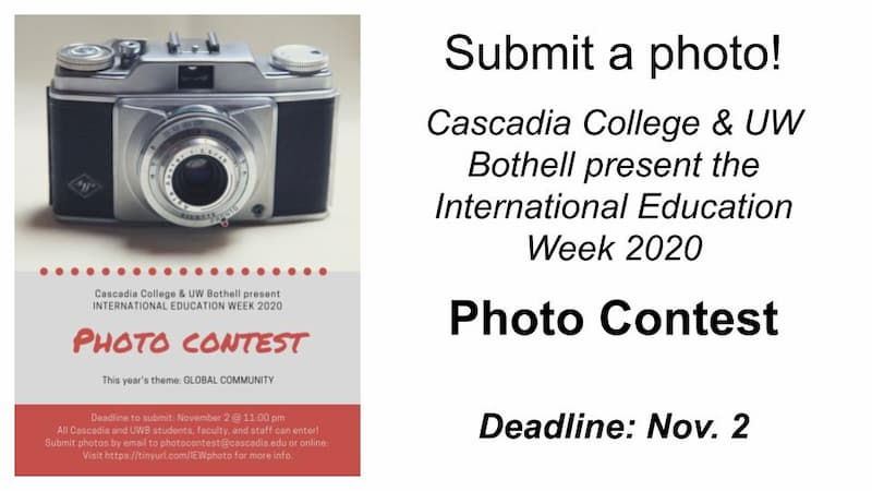 camera and text advertising international education week photo contest