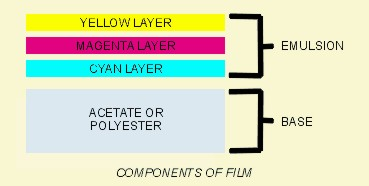 Cross-Section of film strip showing color layers