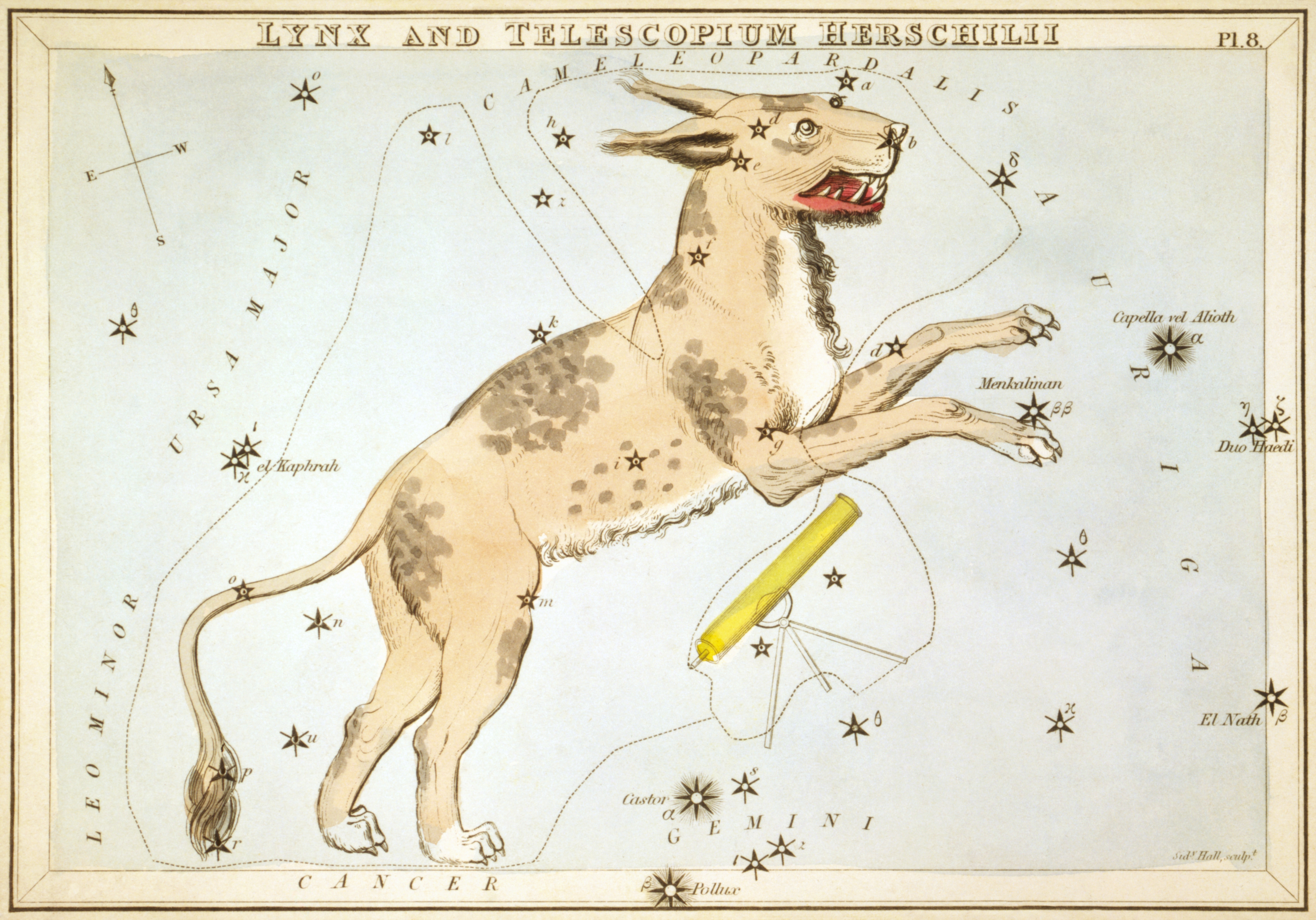 """Lynx and Telescopium Herschilii"", plate 8 in Urania's Mirror, Library of Congress's Prints and Photographs"