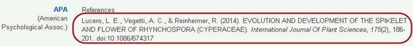Incorrect APA citation