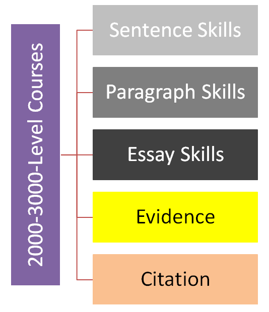 Requirements for writing at the 2000-3000 course level.