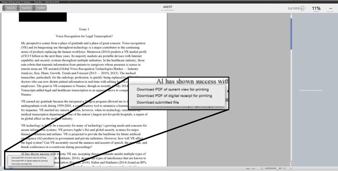 Image of how to download a PDF of the Turnitin report