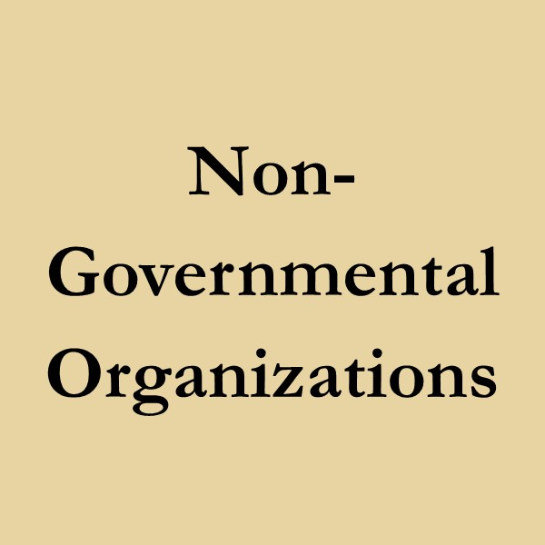 non-governmental organizations (black text on gold ground)