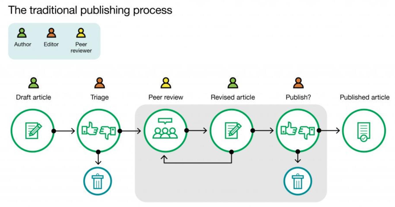 steps of peer review