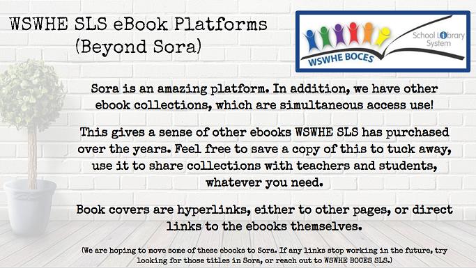 WSWHE SLS eBook platforms beyond Sora