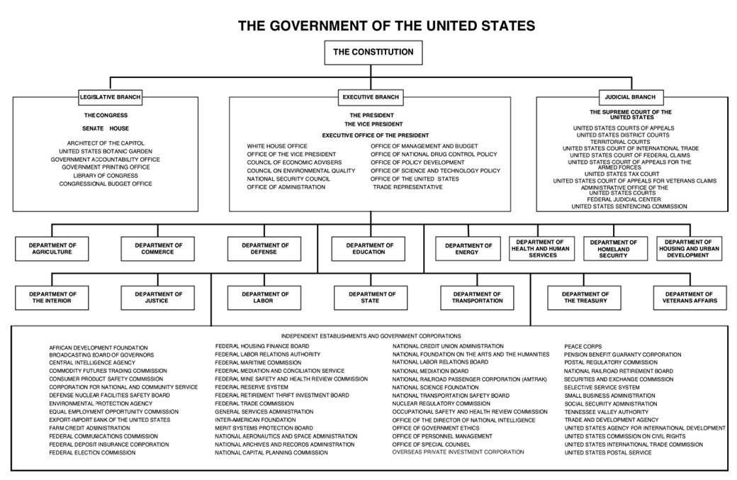 A diagram of the branches of the United States Government, stemming from the Constitution, at the top.