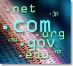 Example of various types of domains, including .com, .gov, .net, and more.