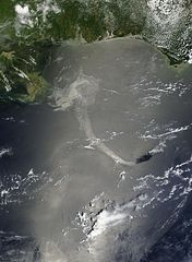 Satellite image of the coast of the gulf of mexico showing a large oil spill