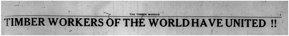 "A headline from the Timber Worker that states: ""Timber Workers of the World Have United!!"""