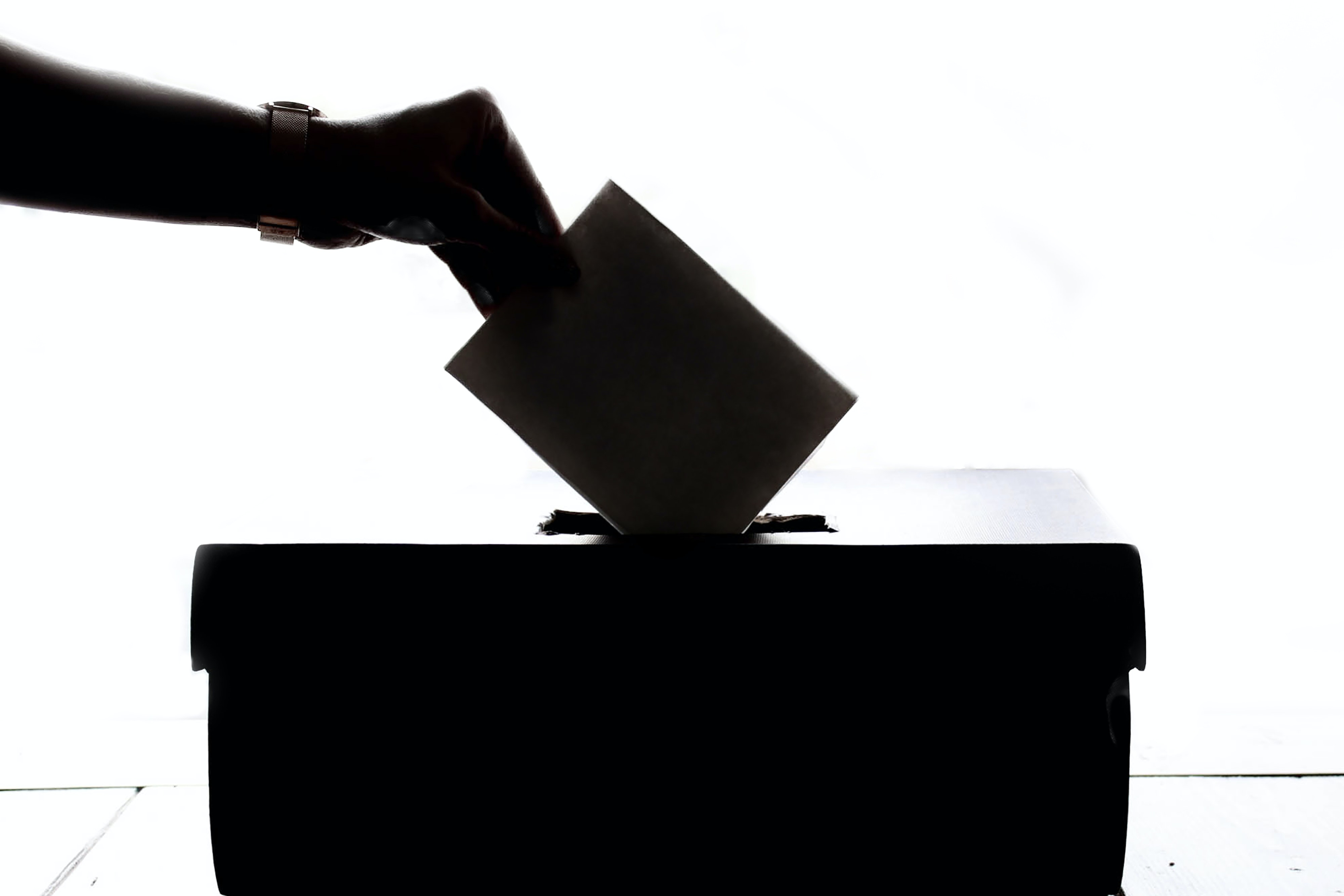 Image of a hand putting a vote in a box.