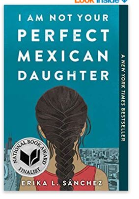 Book cover of NOt your perfect mexican daughter