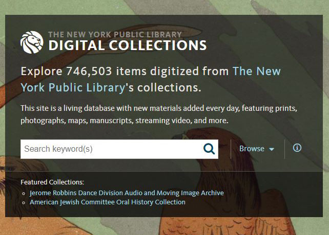 website logo for the NYPL Digital Collections