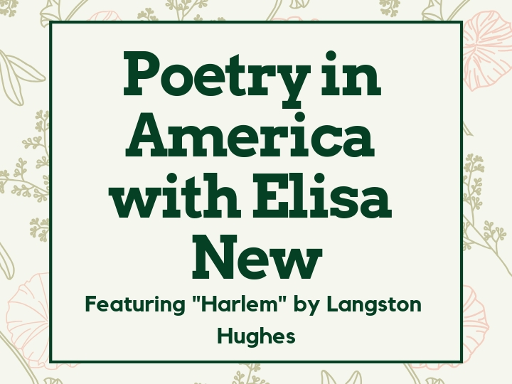 Slide for Poetry in America with Elisa New, featuring Harlem by Langston Hughes, with light floral background