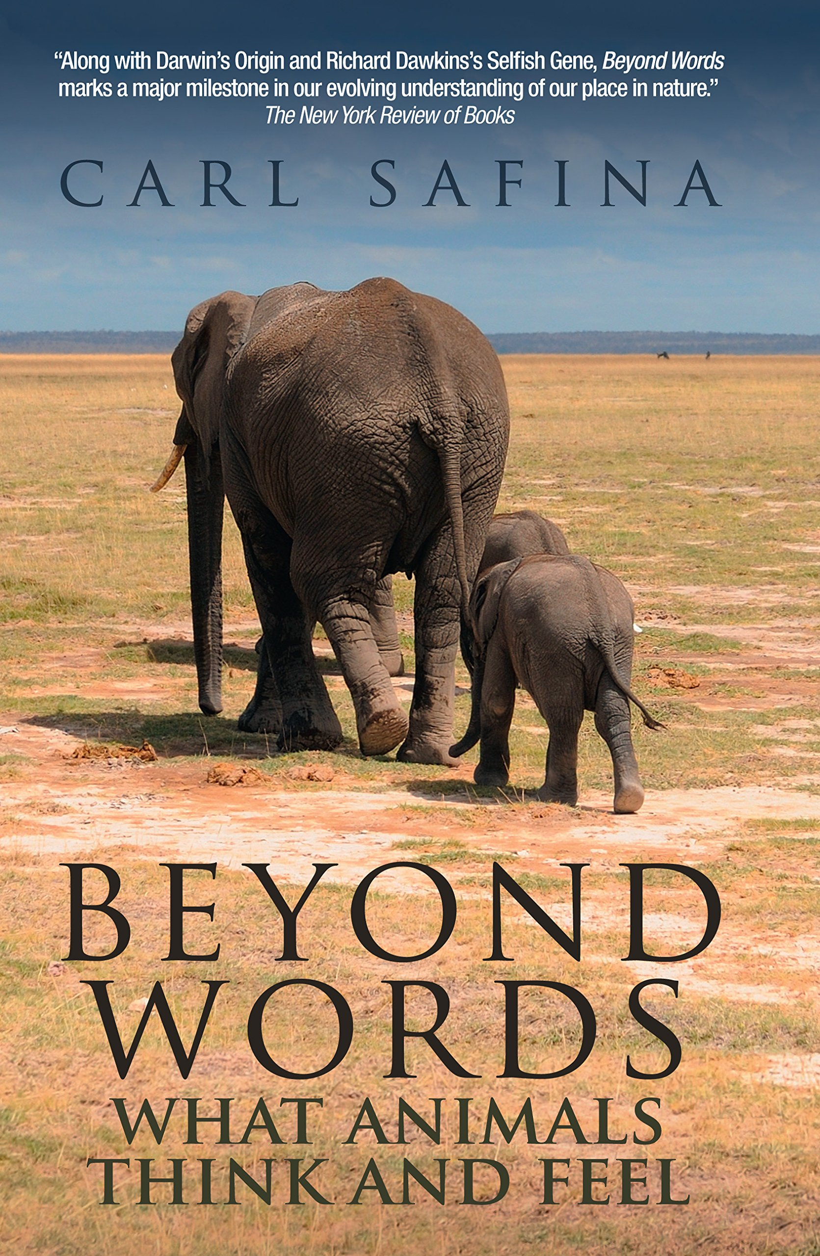 Beyond Words (book cover)