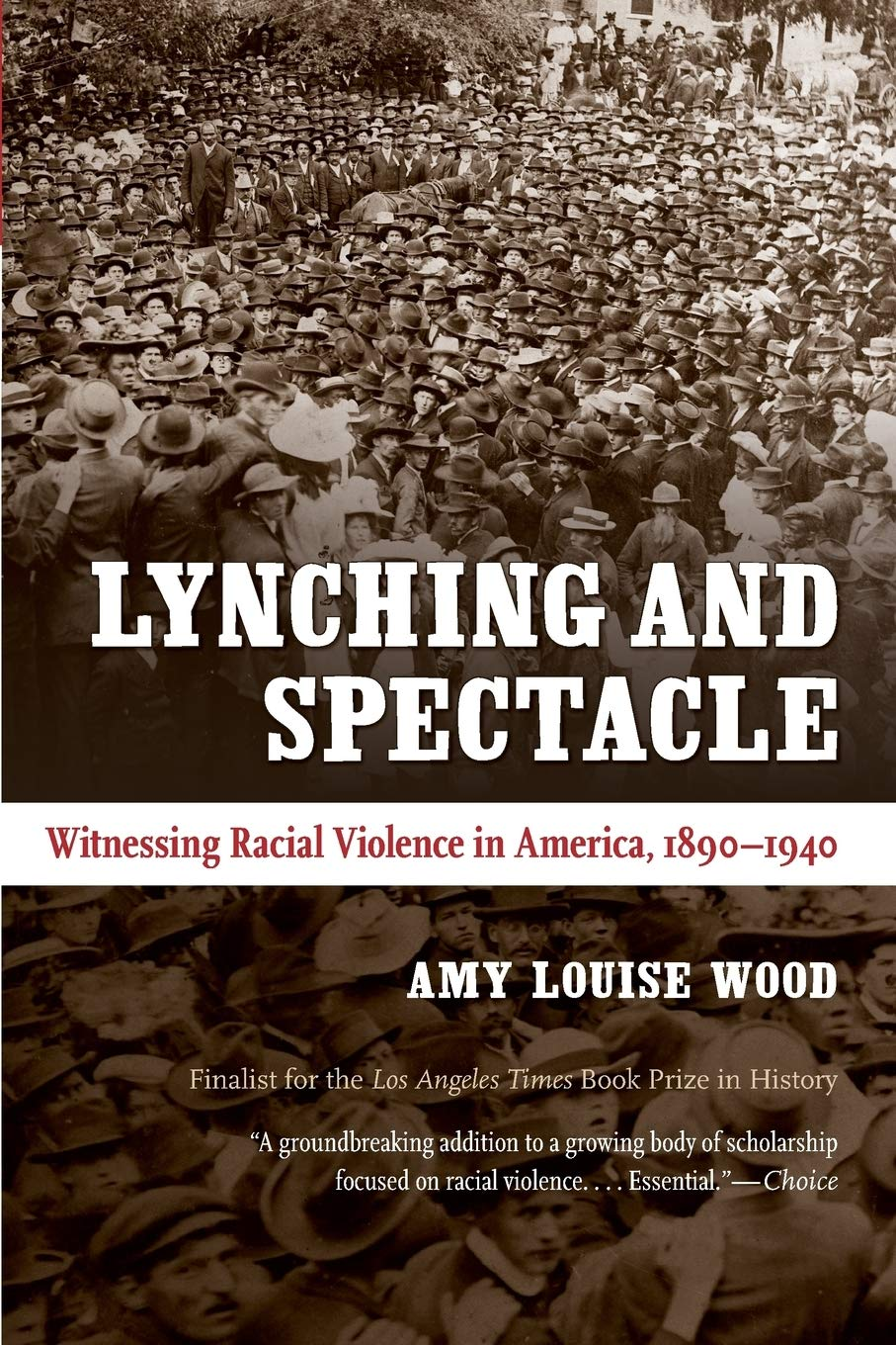book cover: Lynching and Spectacle: Witnessing Racial Violence in America, 1890–1940