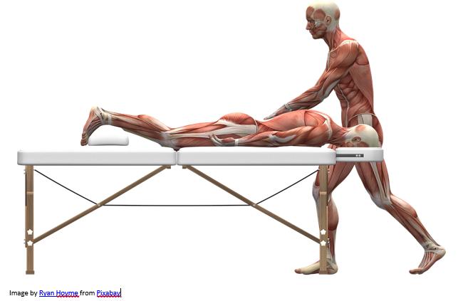 skin-free model demonstrating massage on another model