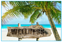 palm tree on beach with sign saying Wellness