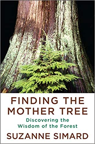 Book cover for Finding the mother tree : discovering the wisdom of the forest
