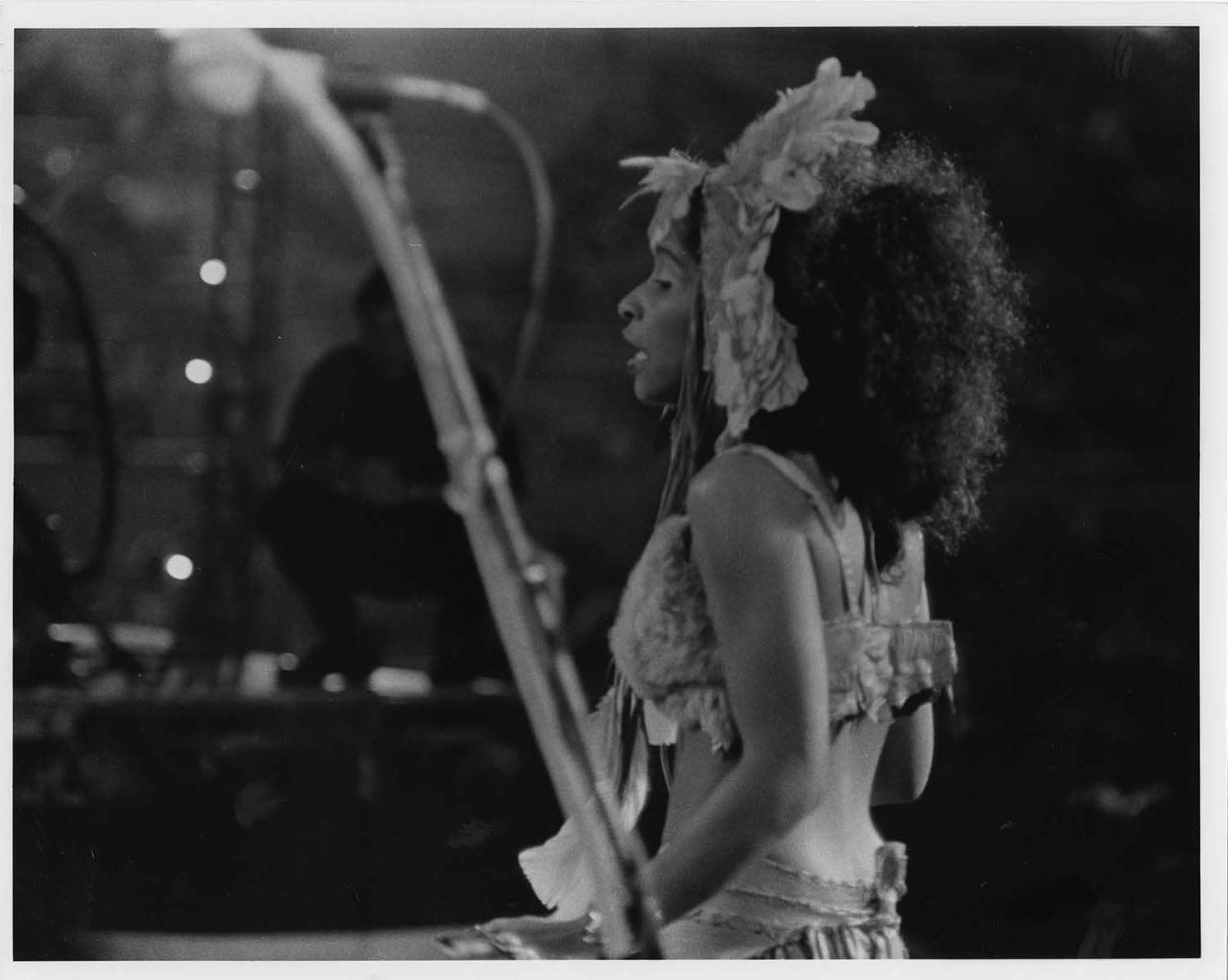 Live concert photo of Chaka Khan