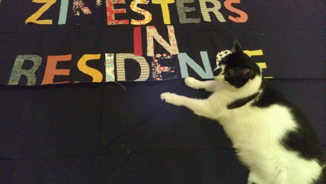 """photo of a black and white cat on a banner that reads """"Zinesters in Residence."""""""