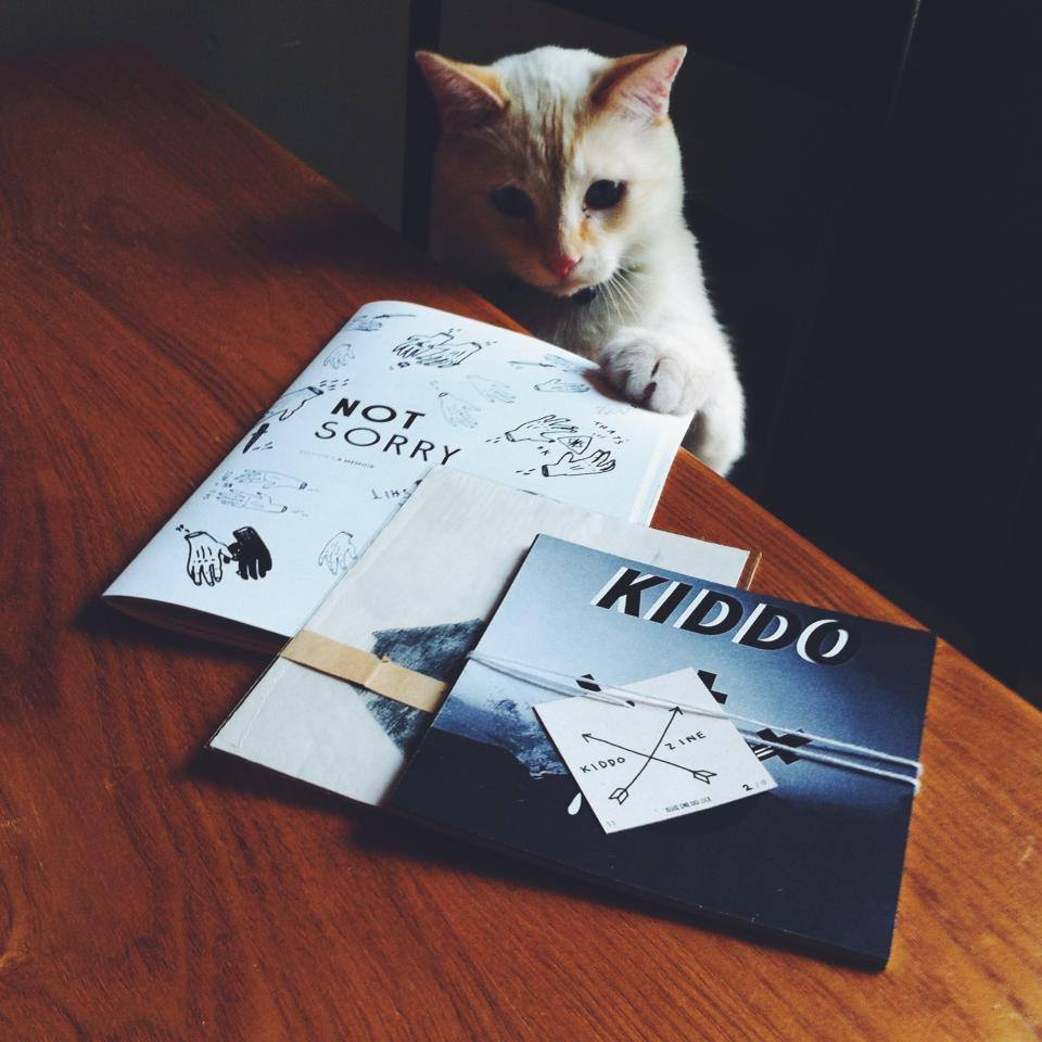cat touching zines on a table