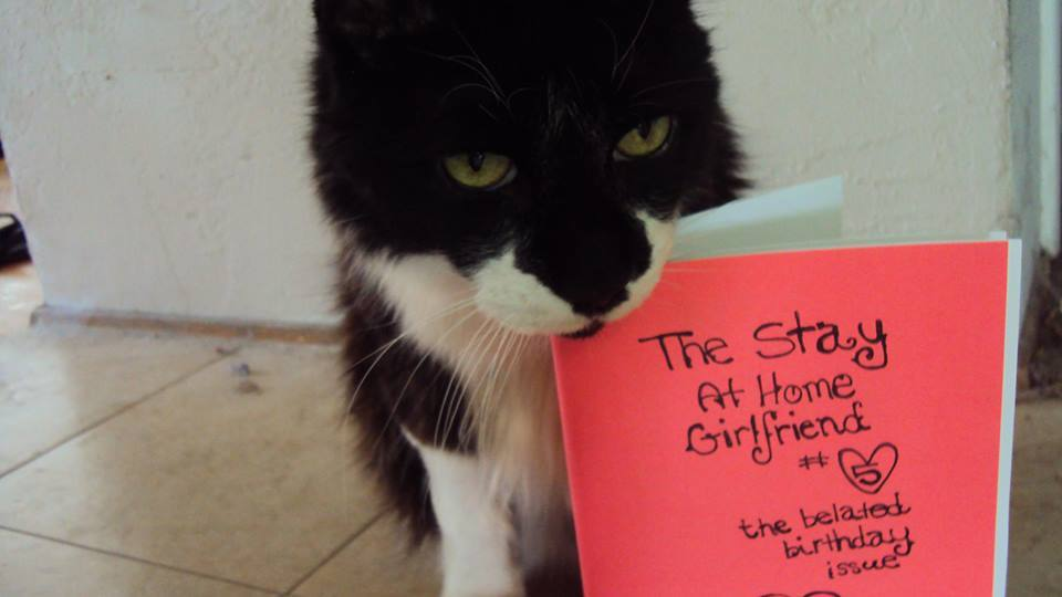 "cat nibbling on a zine called ""The Stay-at-Home Girlfriend."""